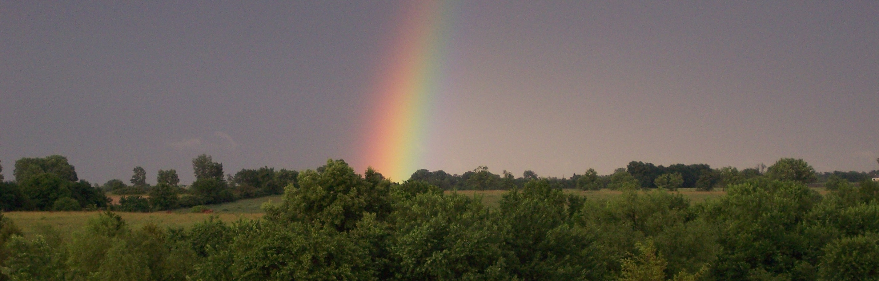 A rainbow we saw from the back porch